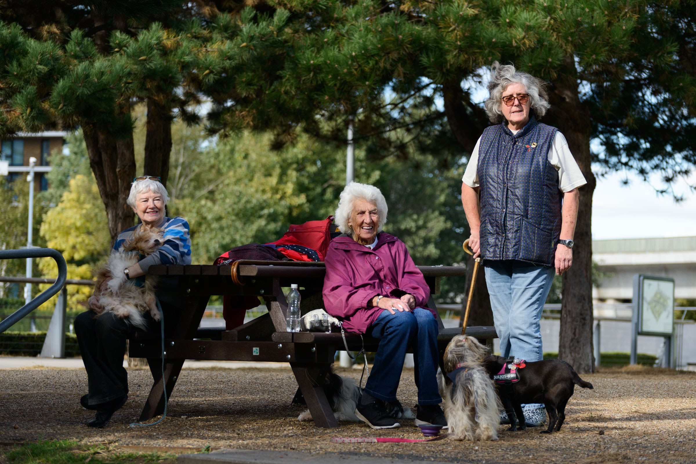 Three women with three dogs sitting on a bench in Thames Barrier Park