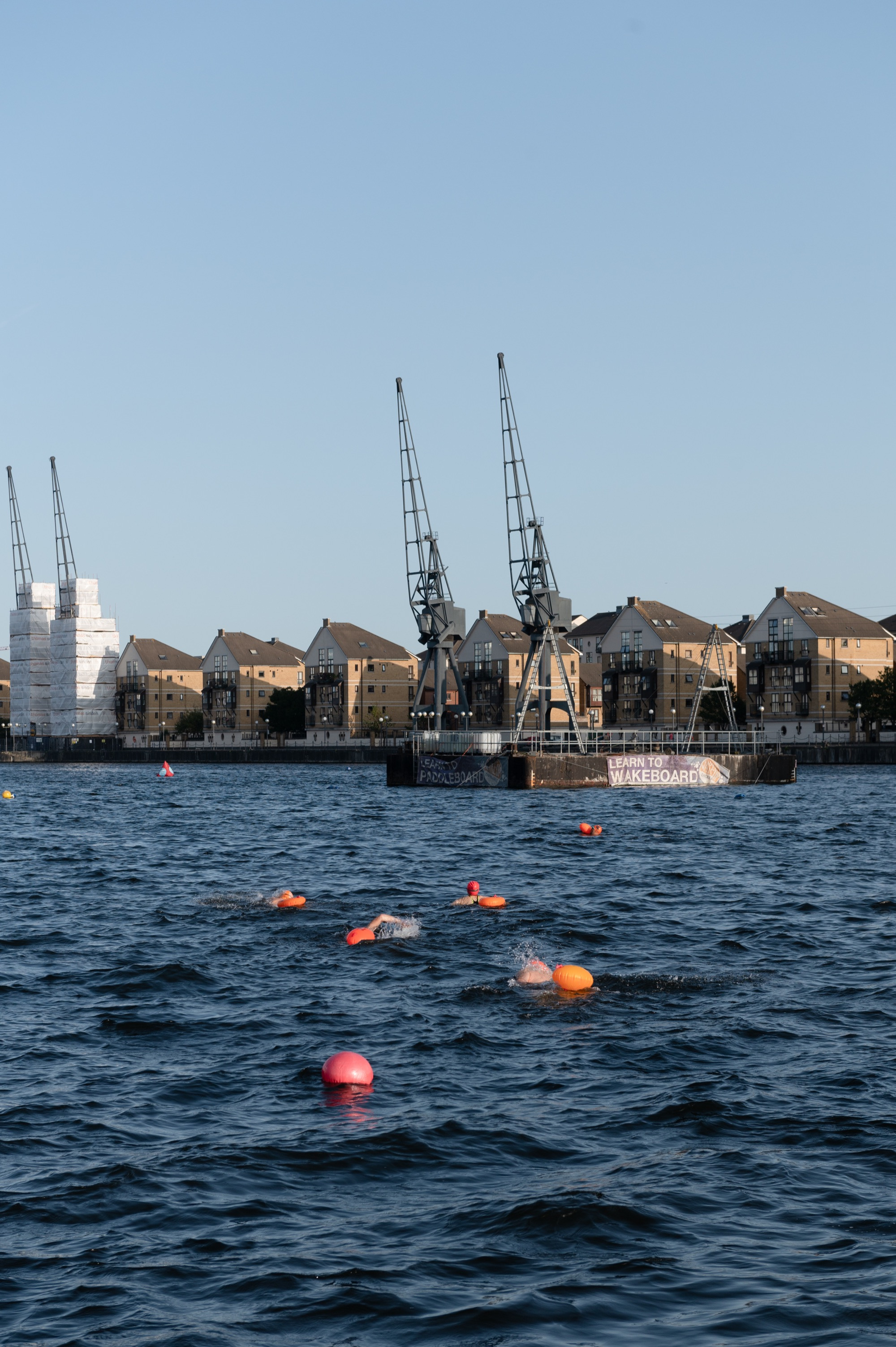 Royal Victoria Dock is a popular place to swim