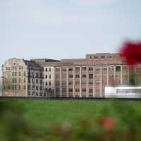 The Millennium Mills with red flowers in the foreground