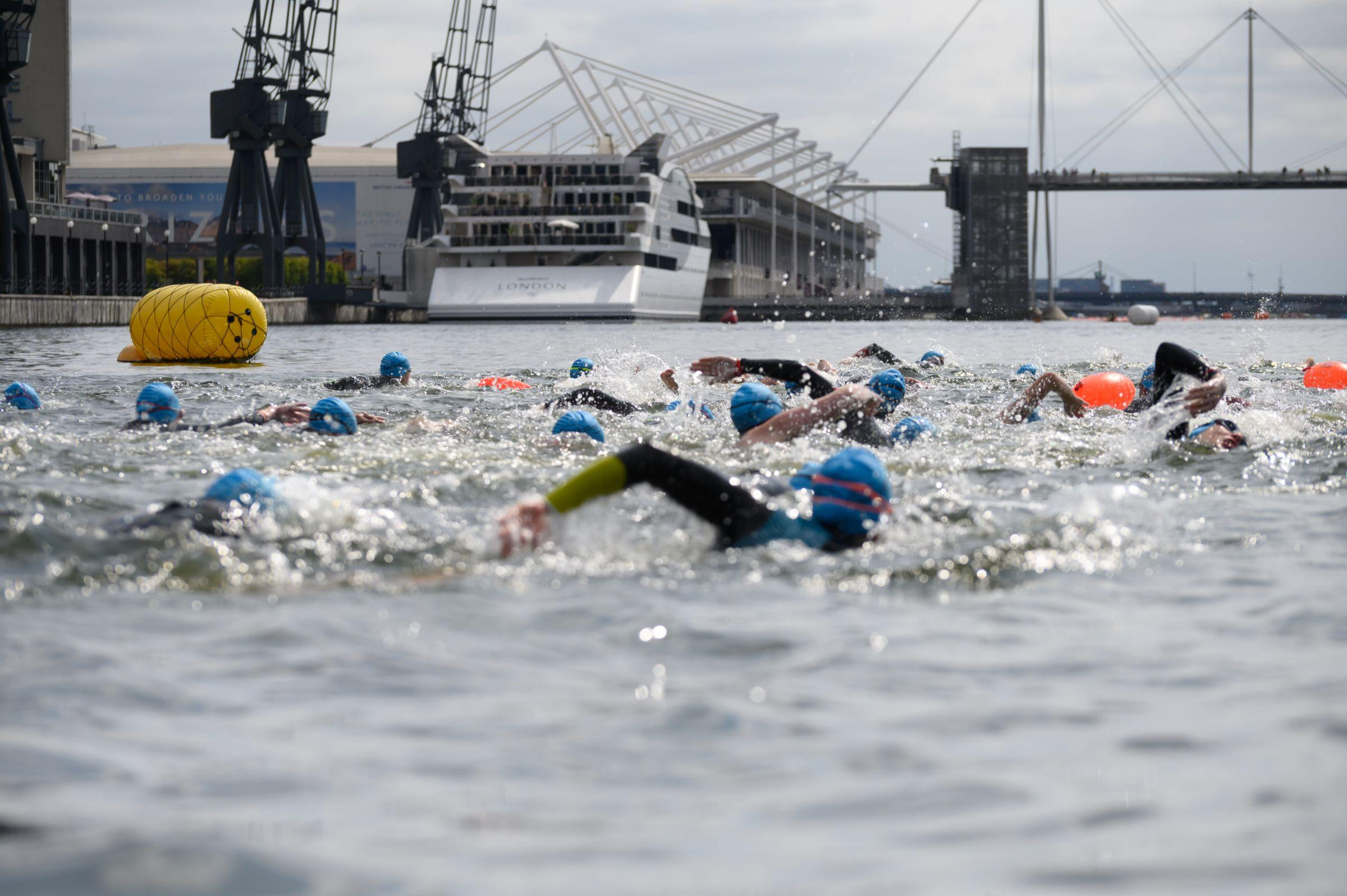 A large group of swimmers in the Royal Docks water