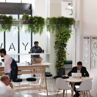 Royal Docks draws a diverse office crowd with its unique workspaces