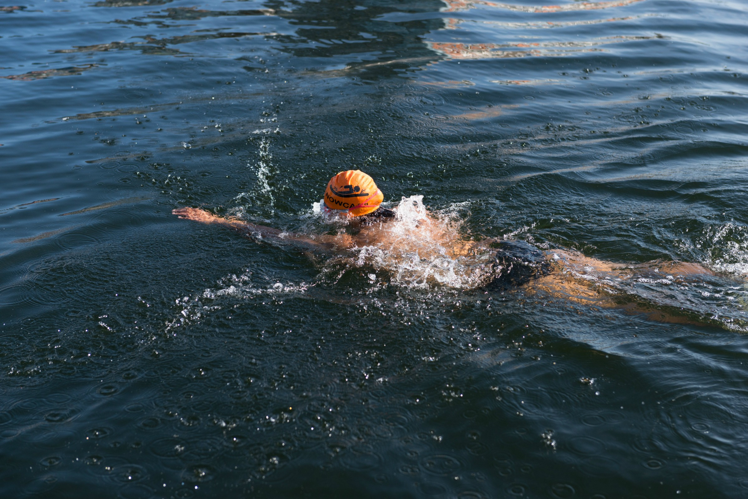 A swimmer in the Royal Docks water
