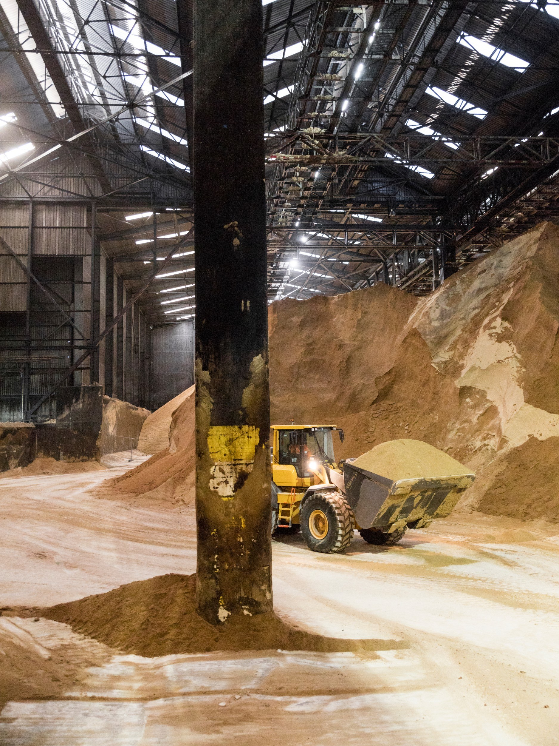 Mounds of sugar several storeys high in a warehouse with a digger moving it around